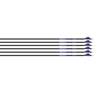 Picture of Beman Arrow Ics Indigo 500 W/ Xpv Vanes 6-Pack White/Purple