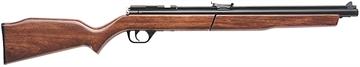 Picture of Benjamin .22 Pellet Rifle Pump Blk
