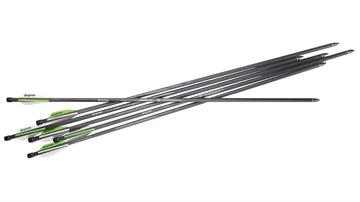 Picture of Benjamin Pioneer Airbow Arrows 6