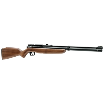 Picture of Benjamin Airguns Ben Discovery Pneumatic 22