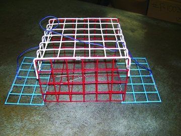 Picture of E-Z Catch 2 Door Non Folding Crab Trap Red White & Blue