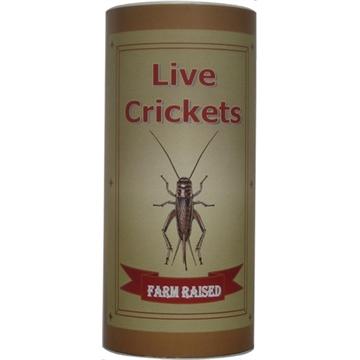 Picture of Hardy Cricket Farm, Llc Throw-Away Cricket Box 24Ctn