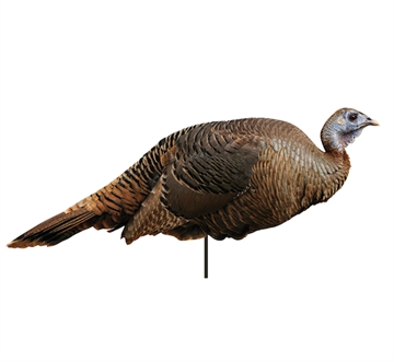 Picture of Montana Decoy CO Spring Fling Hen Decoy