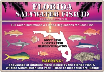 Picture of SW Fish ID Florida Saltwater Fish Id, 10Th Edition