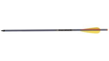 """Picture of Ten Point 20"""" 2219 Aluminium Arrows"""