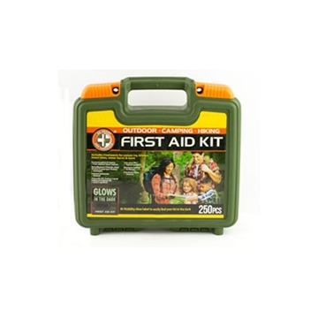 Picture of Wise 250 Piece First Aid Kit