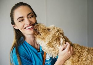 Happy dog loves kissing team member