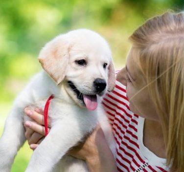 Talk Puppy To Me