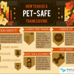 Avoid Holiday Pet Emergencies with Pet Boarding