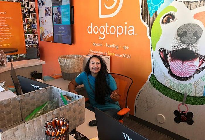 Rover, Emerald, sitting at desk at Dogtopia of Arcadia