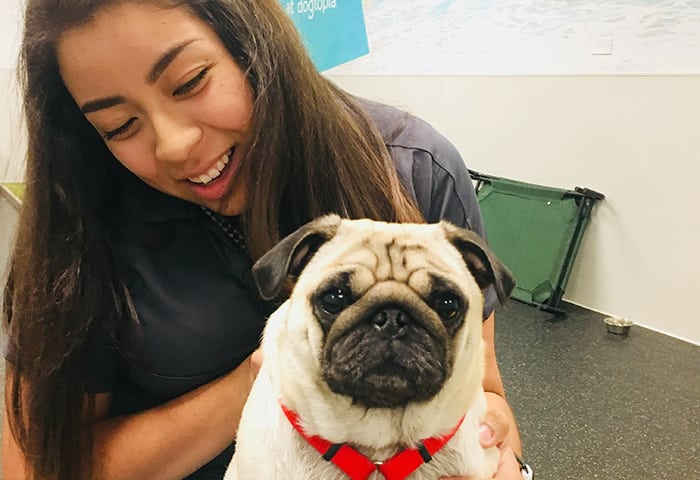 Prisclla, holding cute pug wearing a red leash