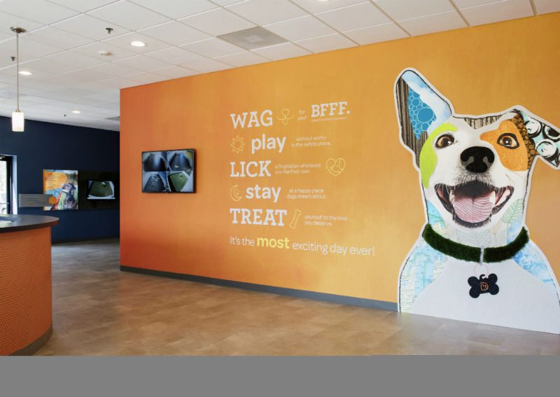 Welcome wall with the logo at Dogtopia of Edmond.