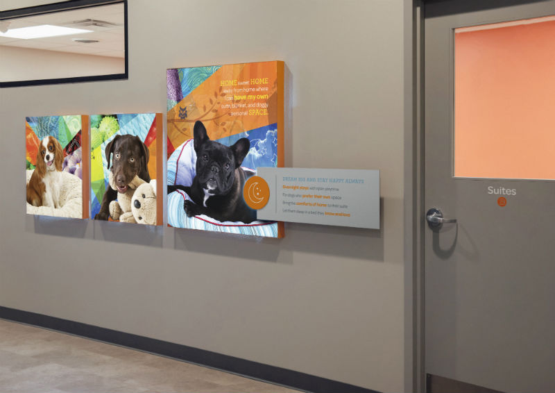 Hallway with a door leading to boarding suites at Dogtopia of Gilbert.