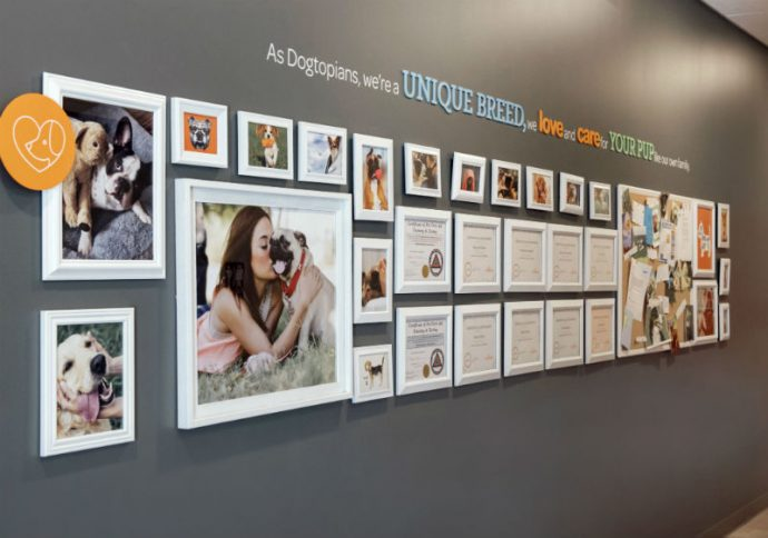 Certificates and dog pictures hanging on the wall at Dogtopia of Webster.