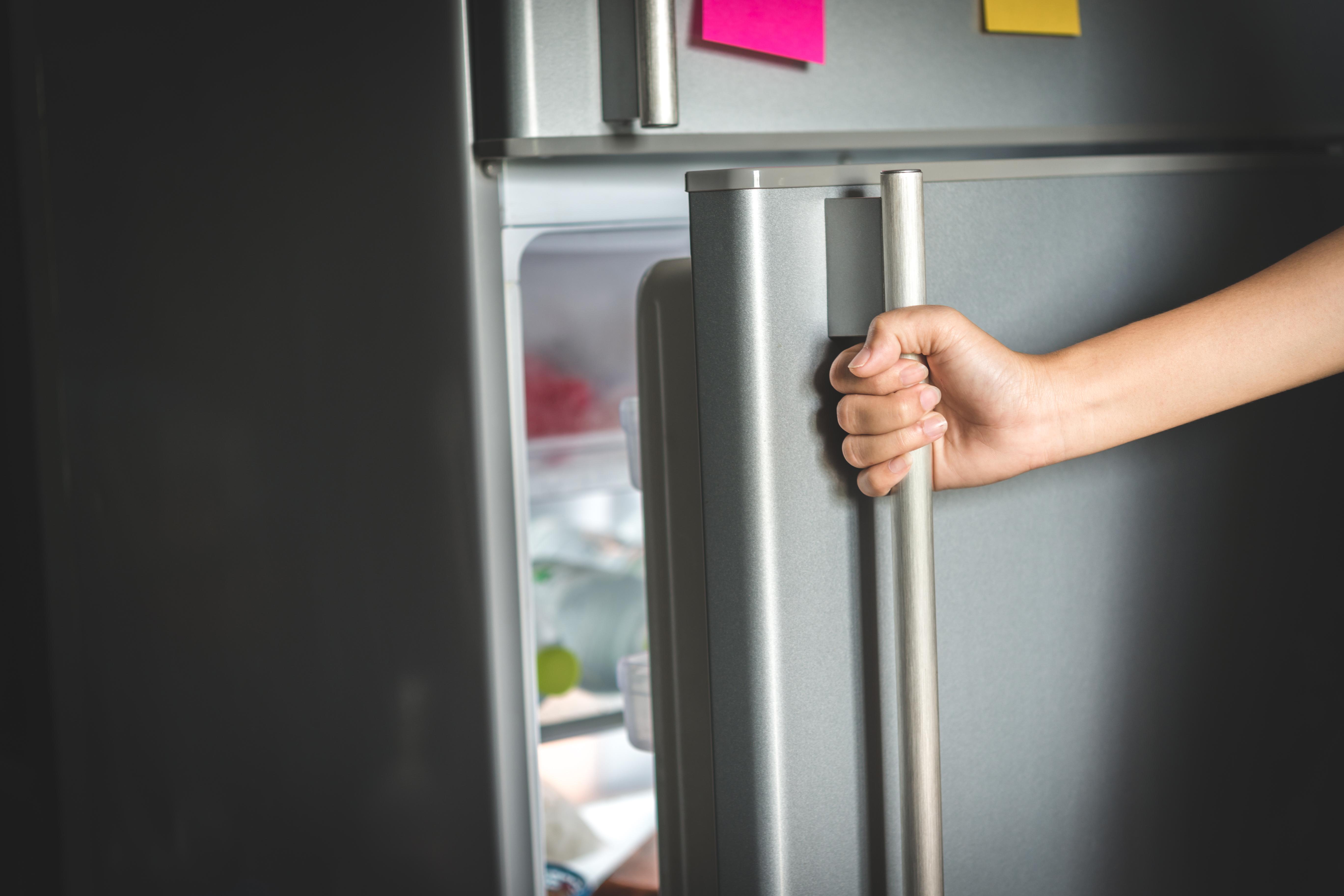 refridgerator fridge opening