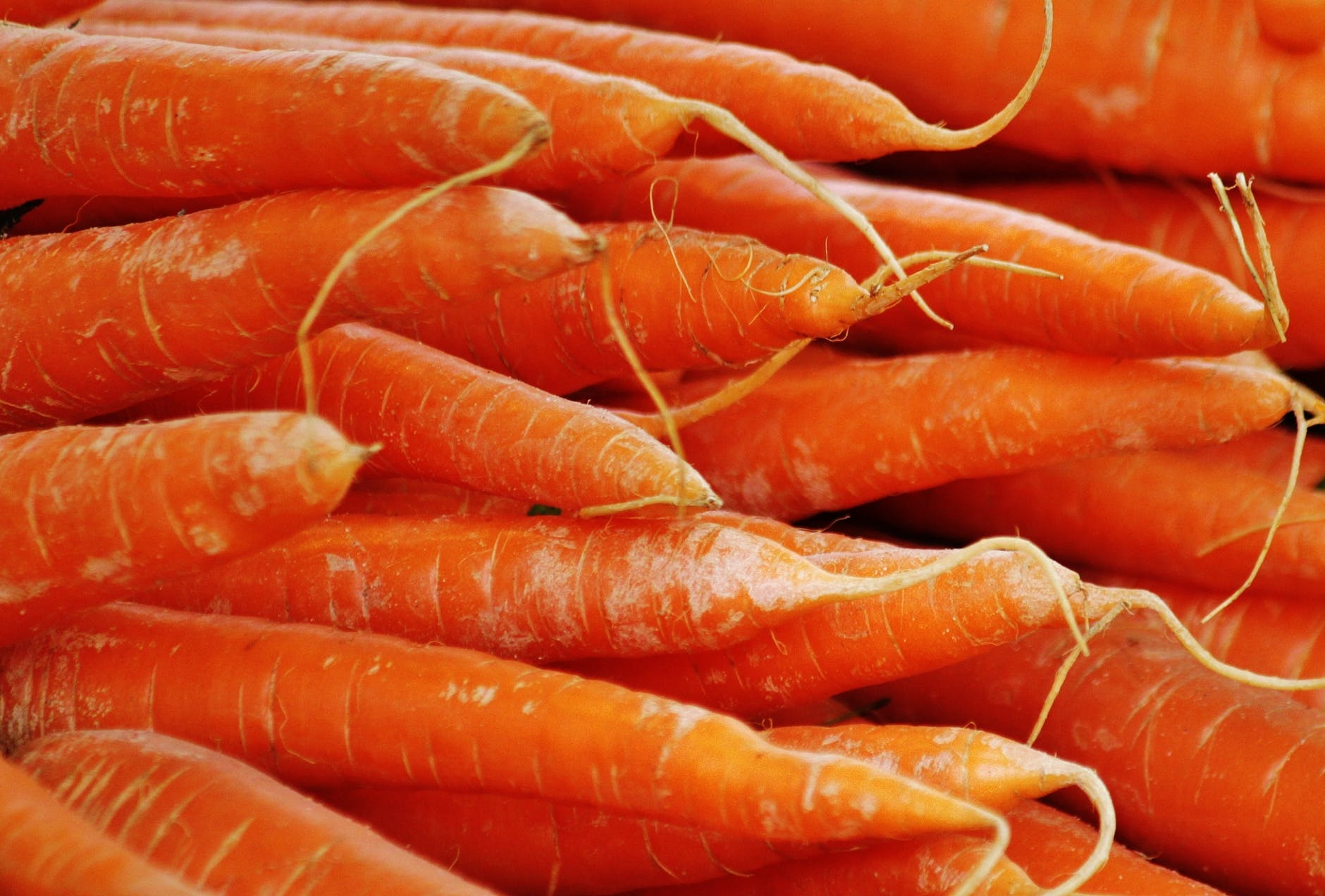 carrots-vegetables-food-orange-54082