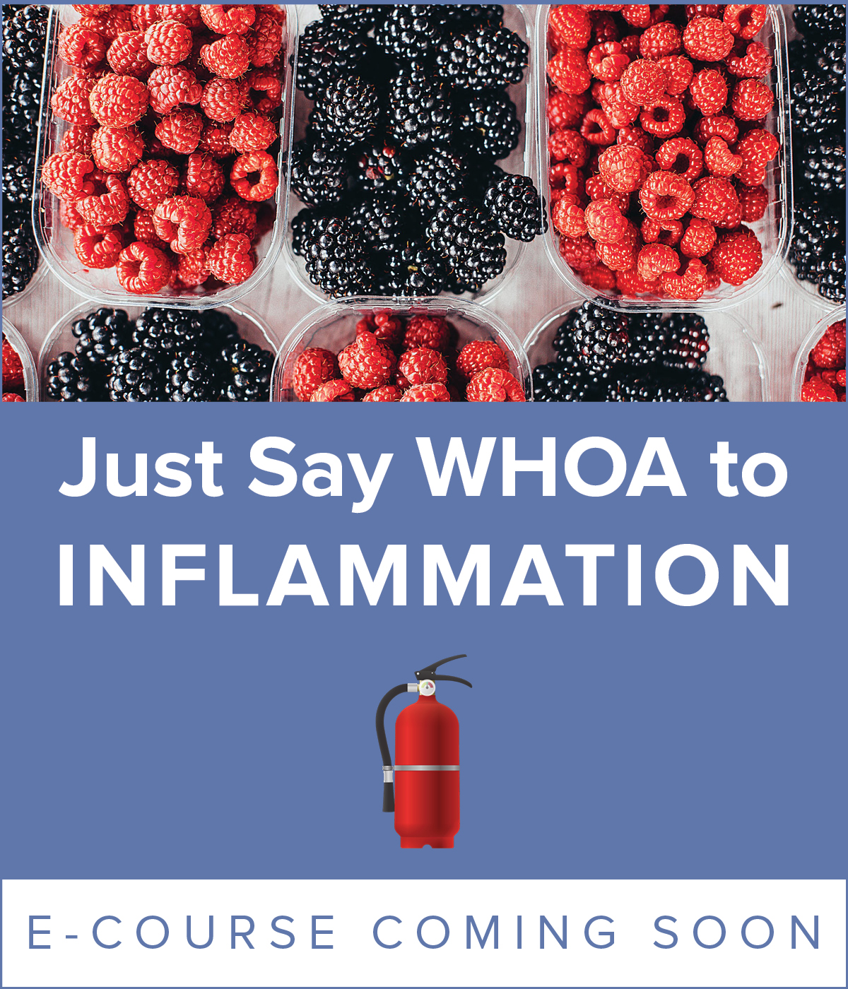 Inflammation Ecourse InDesign
