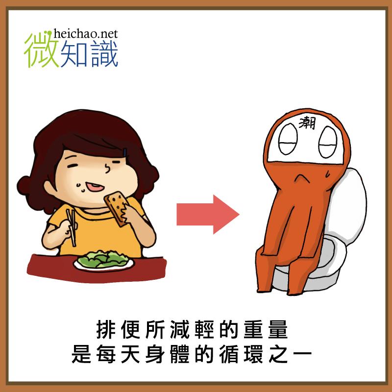 排便所減輕的重量是每天身體的循環之一