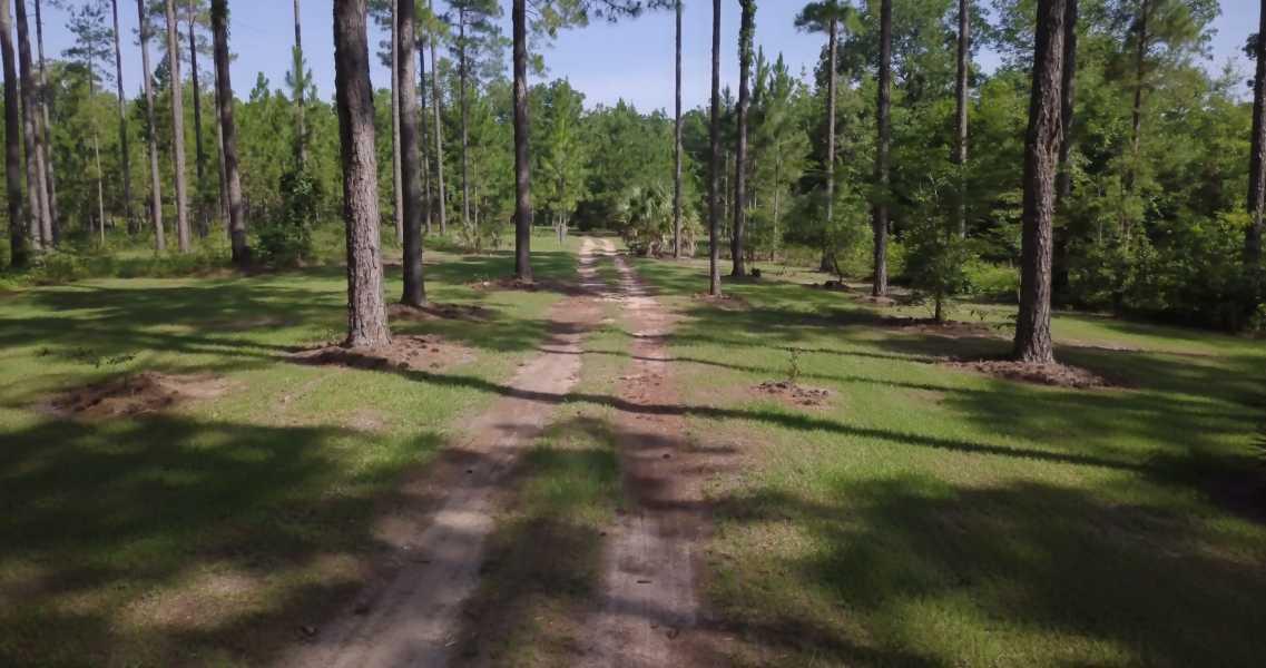 Drone Photo Bainbridge GA