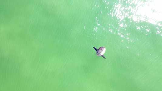 Drone Photo Chatham MA