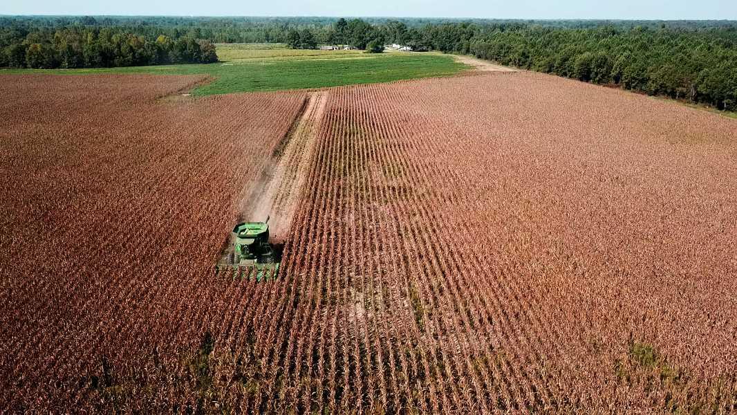 Drone Photo Edgecombe County NC