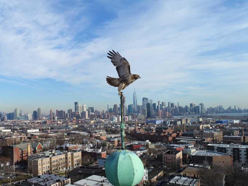 Drone Photo Jersey City NJ