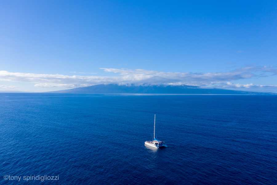 Drone Photo Kaanapali HI
