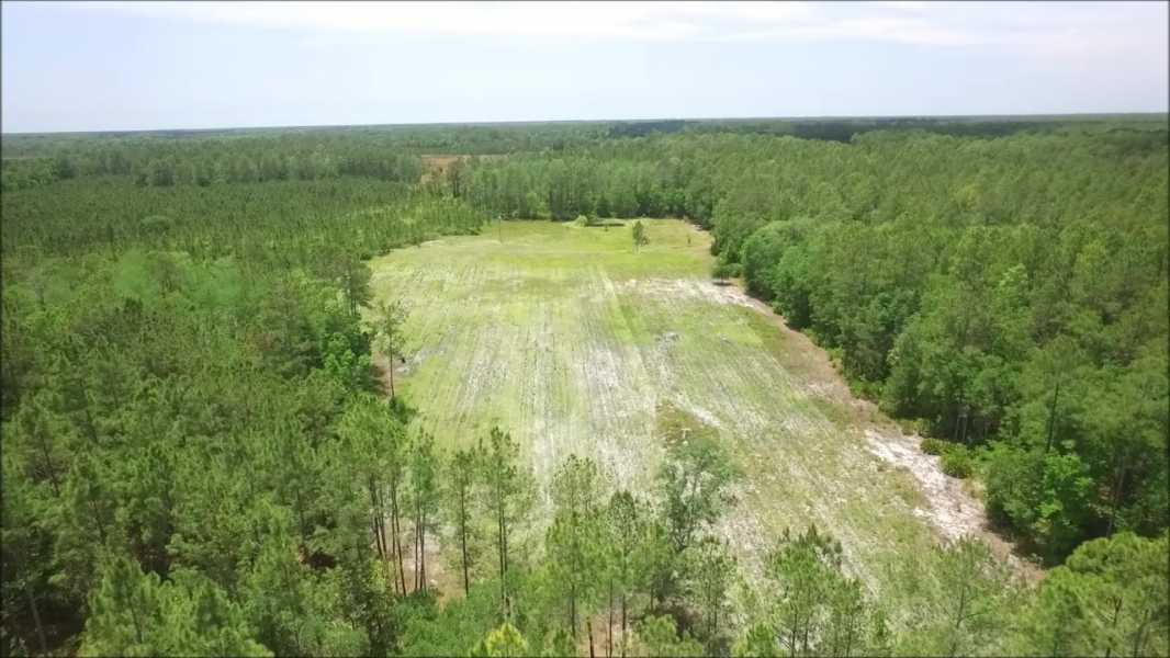 Drone Photo Levy County FL