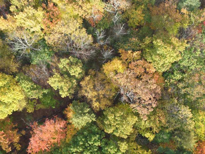 Drone Photo Milford PA