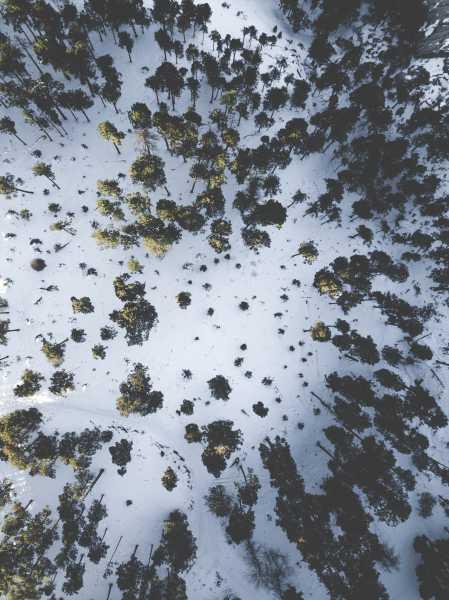 Drone Photo Mt Lemmon AZ