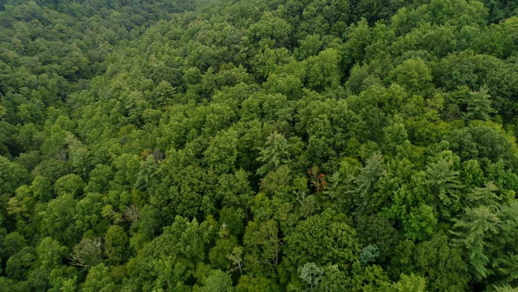 Drone Photo Nelson County VA
