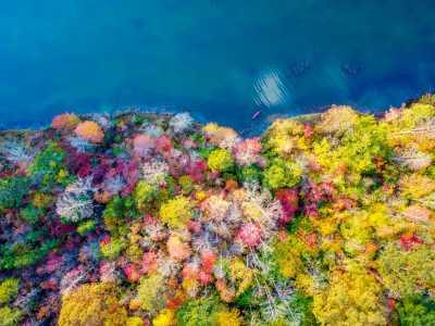 Drone Photo Spurlockville WV