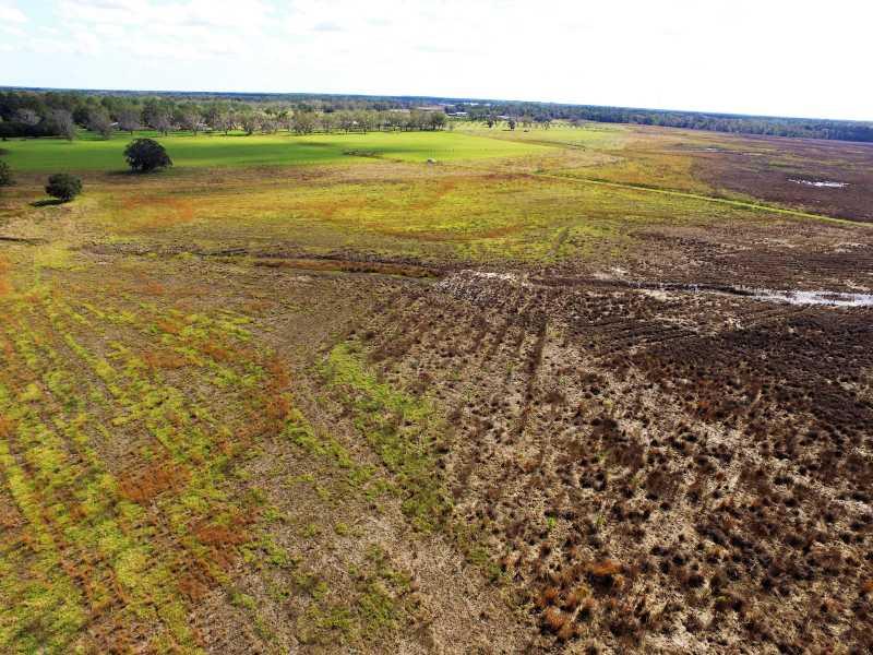 Drone Photo Starke FL