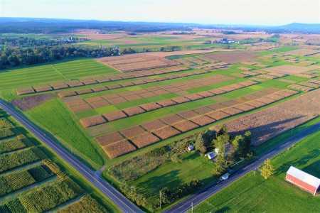 Drone Photo State College PA