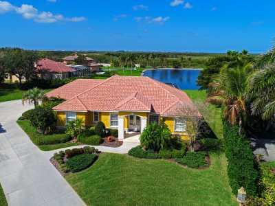Drone Photo Tampa FL