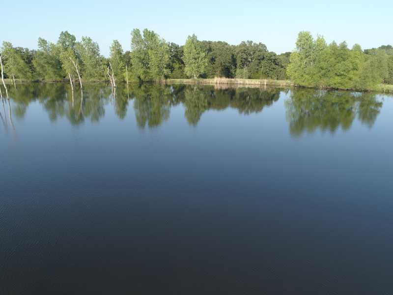 Drone Photo Terrell TX