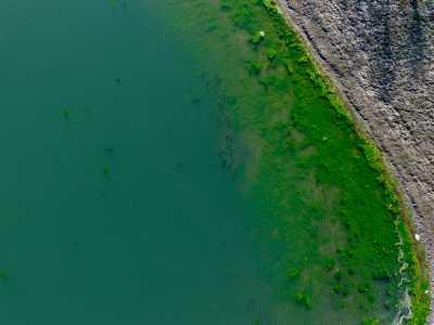Drone Photo Westfield IN
