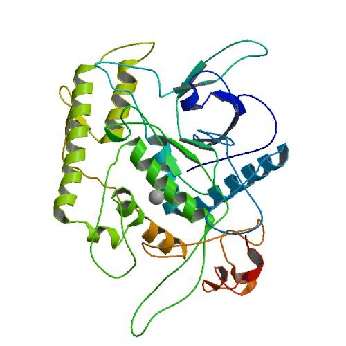 A BOTULINUM TOXIN TYPE B keresési eredményei - Klinikai vizsgálatok nyilvántartása - ICH GCP