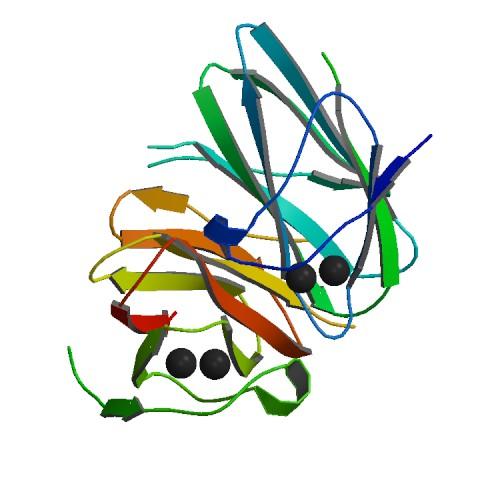 Image result for Collagenase