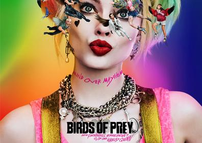 BIRDS OF PREY IMAGE