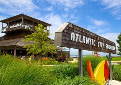 Atlantic City Aquarium