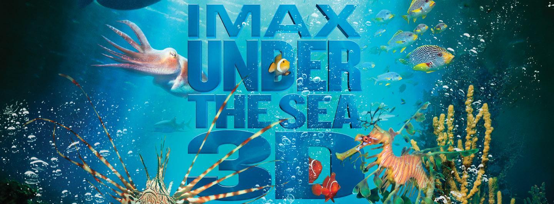 Under the Sea 3D web image