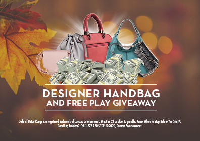 Graphic Design:  Brown background with fall leaves on left side.  Purses with money in front center with Designer Handbag and Free Play Giveaway directly below and disclaimer at bottom.