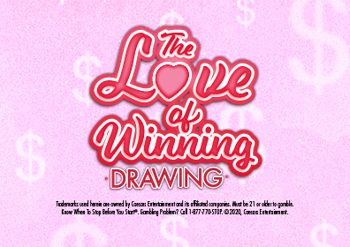 Graphic Design:  light pink background w/white $ floating with The Love of Winning in red cursive writing w/Drawing underneath in print and disclaimer on the bottom