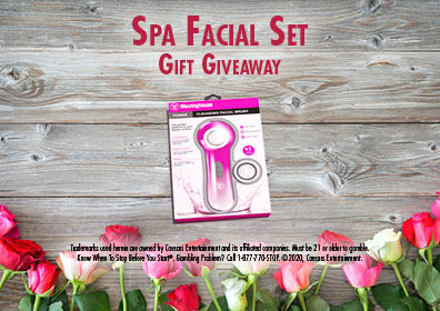 Graphic Design: Rustic wood background with tulips & disclaimer running across bottom.  In middle top are the words Spa Facial Set Gift Giveaway with spa set in middle between words and tulips