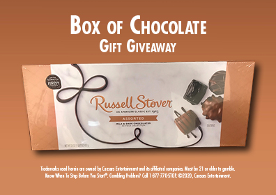 Graphic Design: Light brown background with Box of Chocolate Gift Giveaway and disclaimer in white above and below the BIG box of Chocolates
