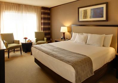 suite with one king bed