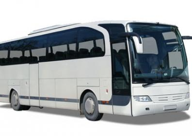Bus Fare redemption program