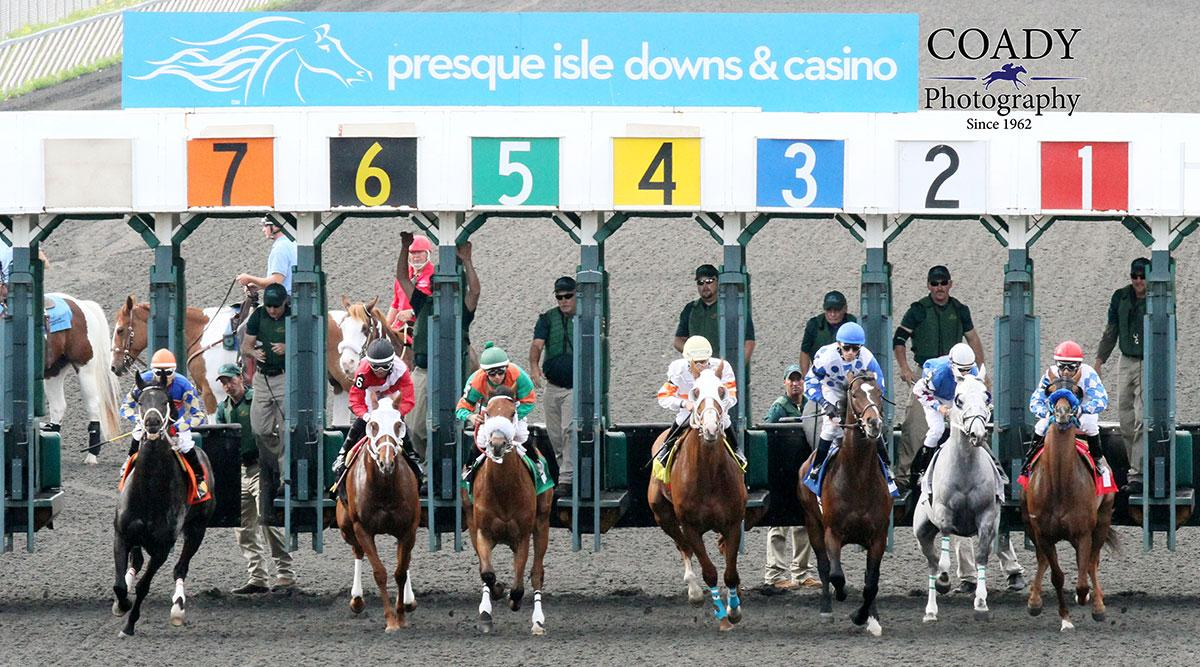 Horse Racing at Presque Isle Downs Racetrack
