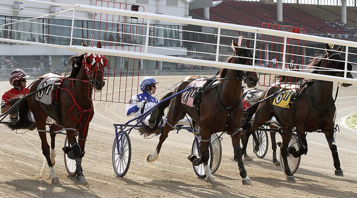 Harness Horse Racing at Scioto Downs